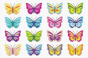 Butterfly Clip Art / Butterflies
