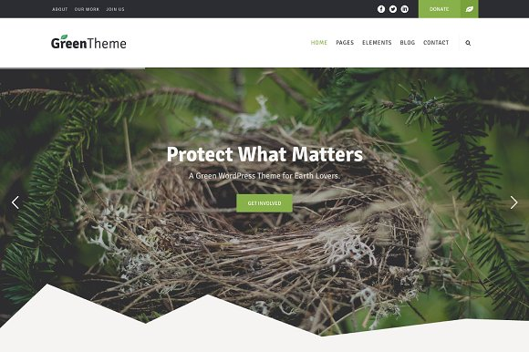 Green WordPress Theme