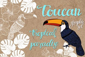 Toucan. Tropical paradise.
