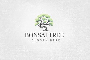 Bonsai Tree Logo Template