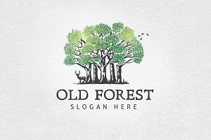 Old Forest Logo Template
