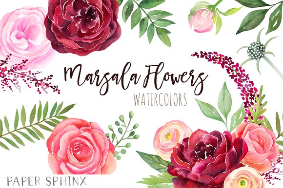 Watercolor Marsala Flowers Clipart