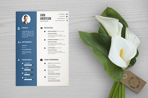 Clean Resume Template-V033