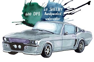SHELBY watercolor illustration