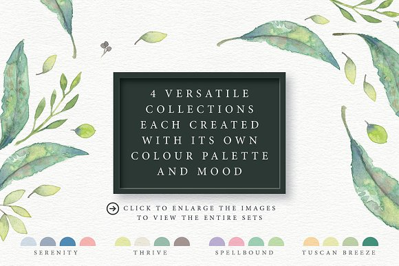 4in1 Elegant Watercolour collections in Illustrations - product preview 1
