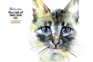 Watercolor portrait of balinese cat