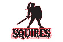 Knight Silhouette Squires Sword Shie
