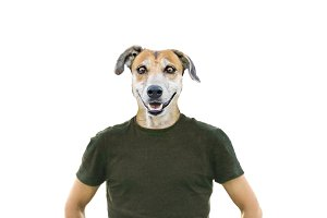 Isolated Photo Man with Dog Head