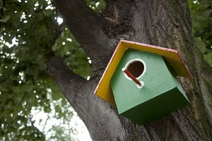 Home-made bright colored bird house.