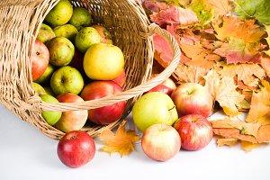 Apple in basket,