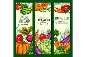 Vegetable, organic farm veggies sketch banner set