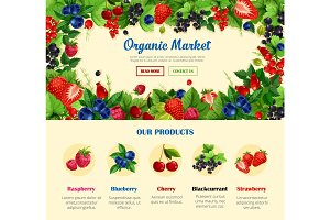 Fruit and wild berry, organic food banner template