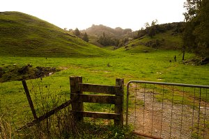 Waitomo, New Zeland