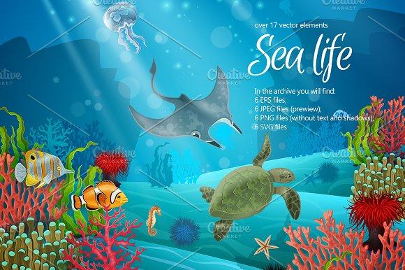 Sea Life Set
