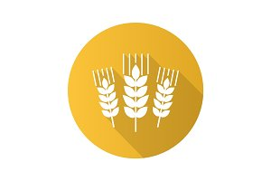 Wheat ears flat design long shadow glyph icon