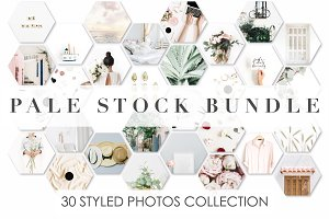 Pale Stock Bundle 2