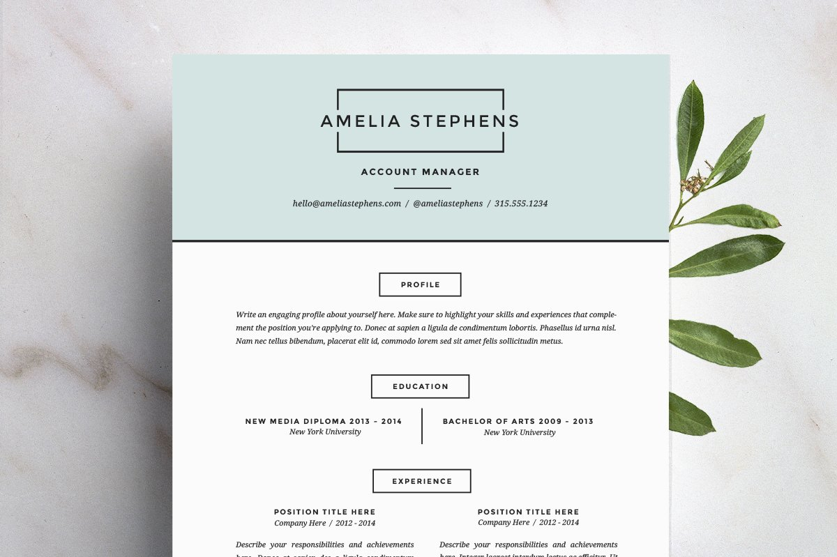 Creative Market Resume Template Free
