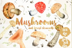 Watercolor forest mushrooms