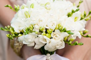 Wedding freesias