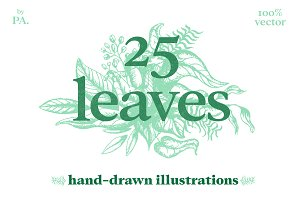 25 Hand-Drawn Leaves