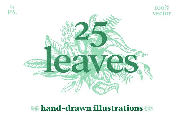 25 Hand-Drawn Leaves