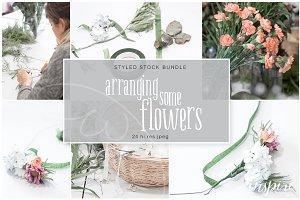 Arranging Flowers Hi Res Jpeg Bundle