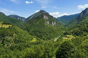Canyon of the Tara river