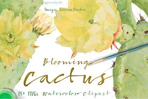 Blooming CACTUS-Clipart set