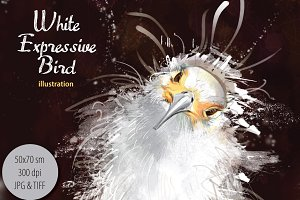 White Expressive Bird poster