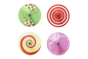 Asian umbrellas set