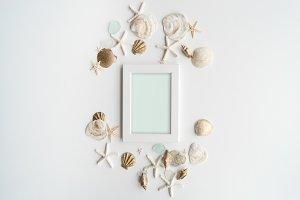 Summer Seashells - Stock Photo