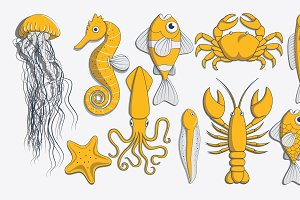 Sea creature illustrations