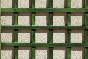 Green wooden lattice wall