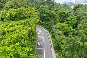 top view of curving road
