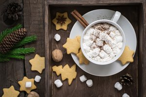 Cup of cocoa with marshmallow and cookies. Selective focus. Christmas decor