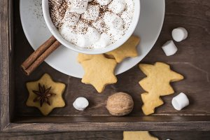 Cup of cocoa with marshmallow and cookies. Selective focus