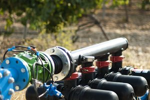 Water pumps for irrigation of vineya