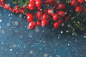 Christmas red branch snow fall greeting card
