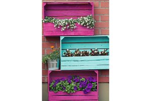 Bright colored wooden boxes with flowers. European exterior design.