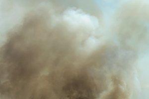 Fire in a field