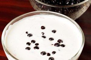 yogurt with bilberries