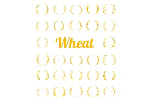 Gold laurel wreath - a symbol of the winner.