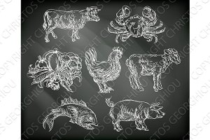 Food Groups Chalk Hand Drawn Animal Icons