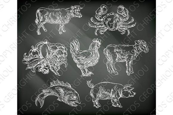Food Groups Chalk Hand Drawn Animal Icons