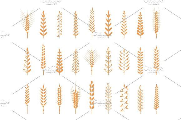 Agricultural Symbols Isolated On White Background