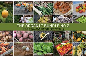 THE ORGANIC BUNDLE NO.2