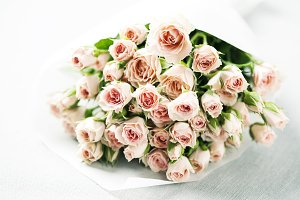 Bouquet of beautiful pink spray roses in white paper