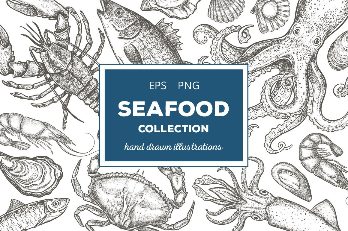 Seafood Illustrations Creative Market