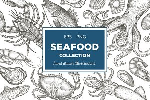 Seafood Illustrations