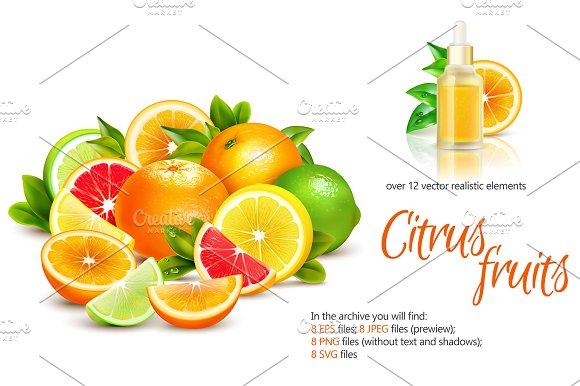 Citrus Fruits Realistic Set